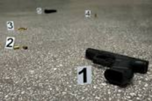 Ballistics Evidence