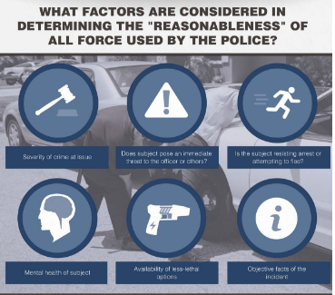 Reasonableness in Use of Force