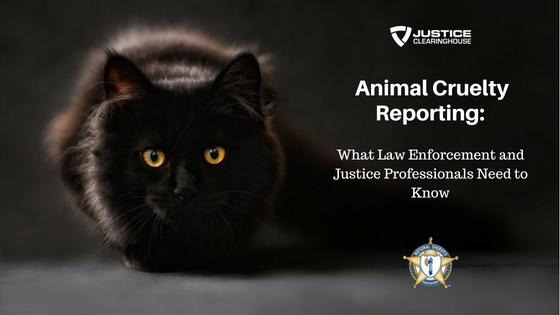 Animal Cruelty Reporting
