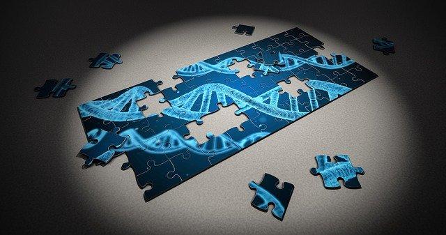 DNA crime solving investigation