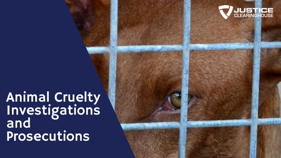 Animal Cruelty Investigations and Prosecutions