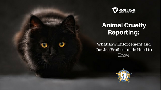 Animal Cruelty Reporting